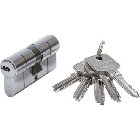 Cylindre D6 PS 50 x 50 Nickelé avec protection par pré-casse 5 clés réversibles et code card
