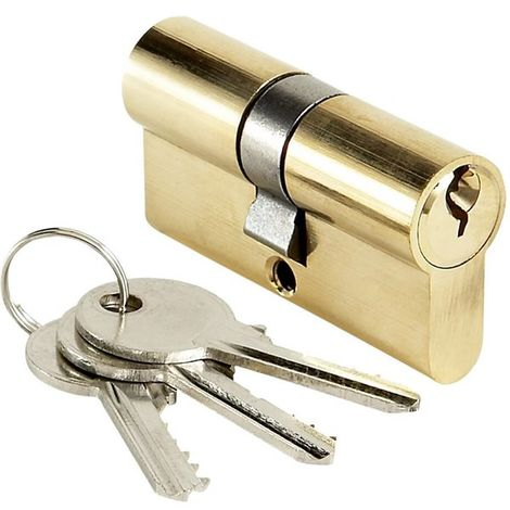 Cylindre de porte 25x25 mm Barillet de serrure double entrée BRICARD 3 clés