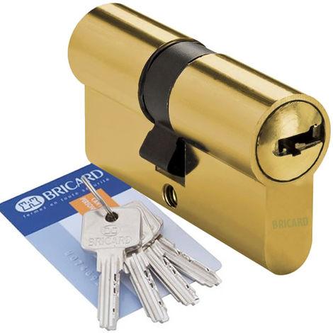 Cylindre de porte 40 x 30 mm BRICARD MEDIAL Barillet haute sécurité 4 clés et carte de propriété