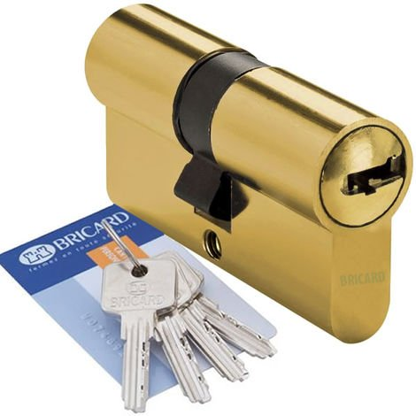 Cylindre de porte 40 x 40 mm BRICARD MEDIAL Barillet haute securite 4 cles et carte de propriete