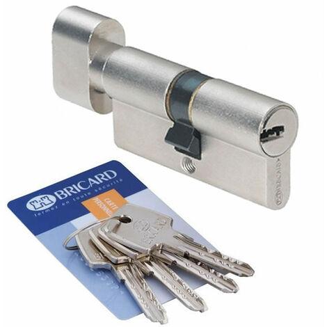 Cylindre de sécurité Astral Bricard 30 + 30 mm 4 clés reversibles crantées