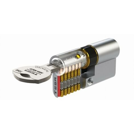 Cylindre de sûreté TESA TD60 clé reversible - Nickelé - 40 x 40 - Varié - 3 clés - TD634040N