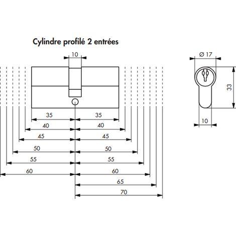 Cylindre HG6 35x55 THIRARD - Laiton sur passe PTT et EDF - PU063555