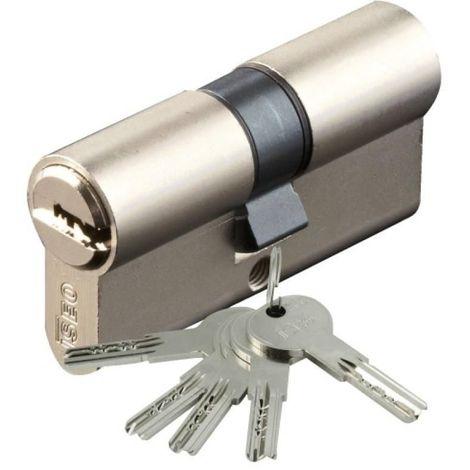 Cylindre Iséo R6 nickelé 5 clés réversibles + carte de réappro 40 x 40