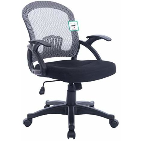 Darwin Mesh Style Low Back Swivel Office Chair