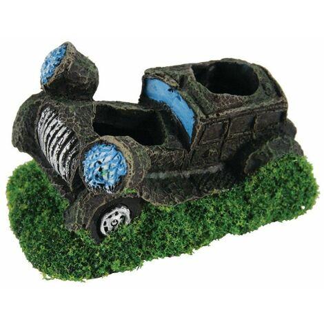 °decor aqua car plant