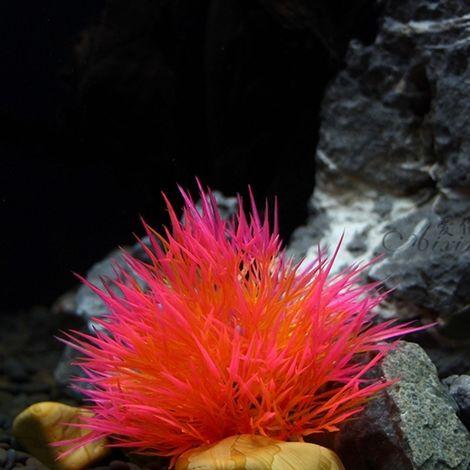 Décoration aquarium rose Ornement Aquatique Simulation Plante Réservoir de poissons Herbe d'eau artificielle, Taille: 10.0x10.0c