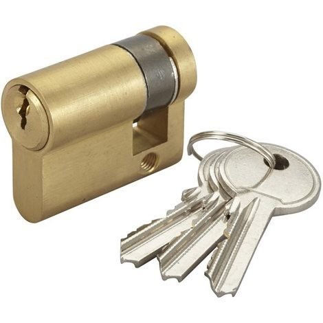 Demi Cylindre de porte 10x30 mm Barillet de serrure BRICARD 3 clés