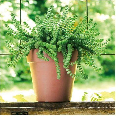 DEROMA Pot de fleurs rond Like corten - Coloris terre rouge - 26cm