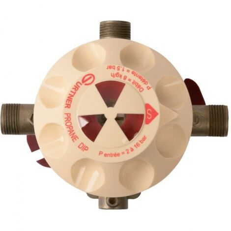 """main image of """"Détendeur gaz propane - Inverseur automatique Dip - Gurtner"""""""