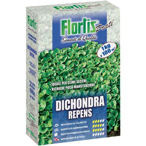 DICHONDRA 1000 G