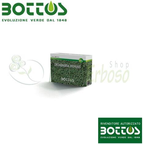Dichondra Repens - Graines pour pelouse 500 g