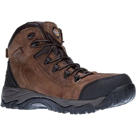 Dickies Mens Calder Steel Toe Cap Safety Boot / Workwear (6) (Brown)