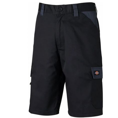Dickies - Short Everyday