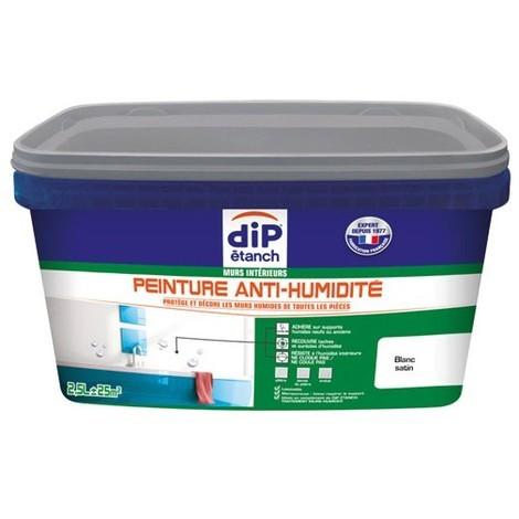 Dip Etanch Peinture Anti Humidité 2 5l Blanc