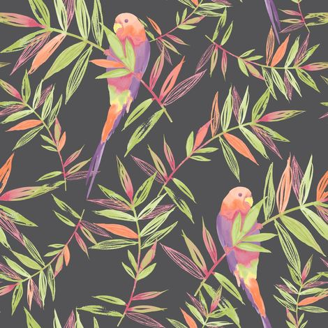 DISCONTINUED Birds Wallpaper Tropical Parrot Floral Leaves Jungle Black Multi Coloured Raschr