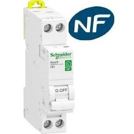 Disjoncteur 1p + n 6A - courbe C - peignable resi9 xp Schneider R9PFC606