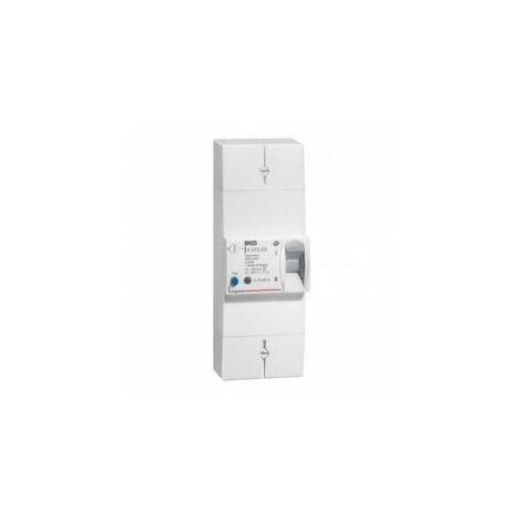 Disjoncteur de branchement - bipolaire - sélectif - 60A - 401006 - Legrand