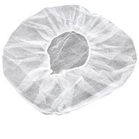 Disposable Hair Net 100pk - One Size