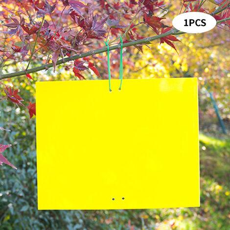 Doble cara pegajosa Trampas Trampas de plantas de interior al aire libre del mosquito con tiras de alambre para la captura de insectos voladores afidos minadores de hojas Los trips