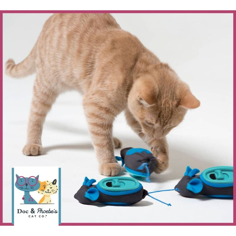 Image of Indoor Cat Feeder Blue - Blue - Doc&phoebe's