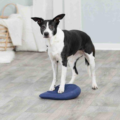 Dog activity coussin d'équilibre, rempli d'air - 28 × 4 × 28 cm, bleu foncé