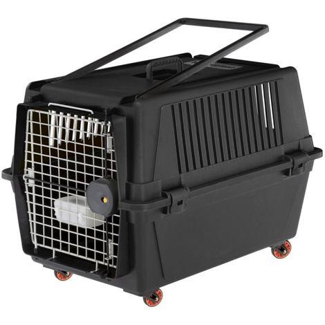 Dog CAT Transport Box