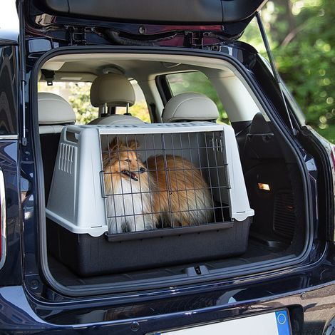 Dog CAT Transport Box Mini, l 72 x P 41 x H 51 cm