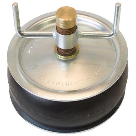 Drain Test Plugs - Brass Caps