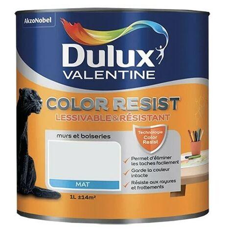 Dulux Valentine Peinture acrylique Color Resist Roc blanc Mat - 1L