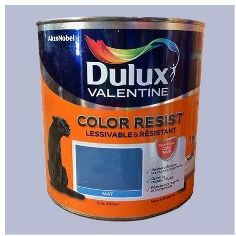Dulux Valentine Peinture acrylique Color Resist Violet minéral Mat - 2,5 L