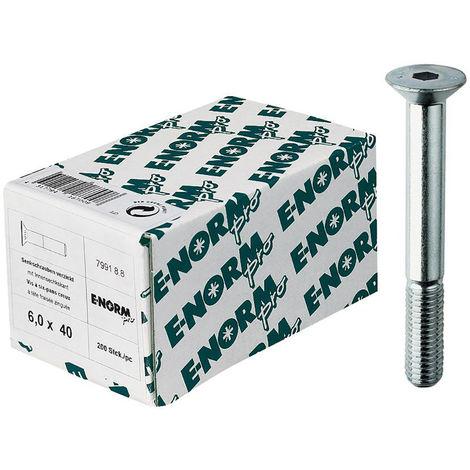 Inh. 50 Stück E-NORMpro Sechskant Holzschrauben DIN 571 ST galZn 8x160 HP