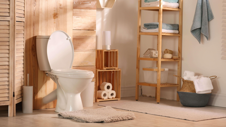 Cómo elegir los accesorios del WC