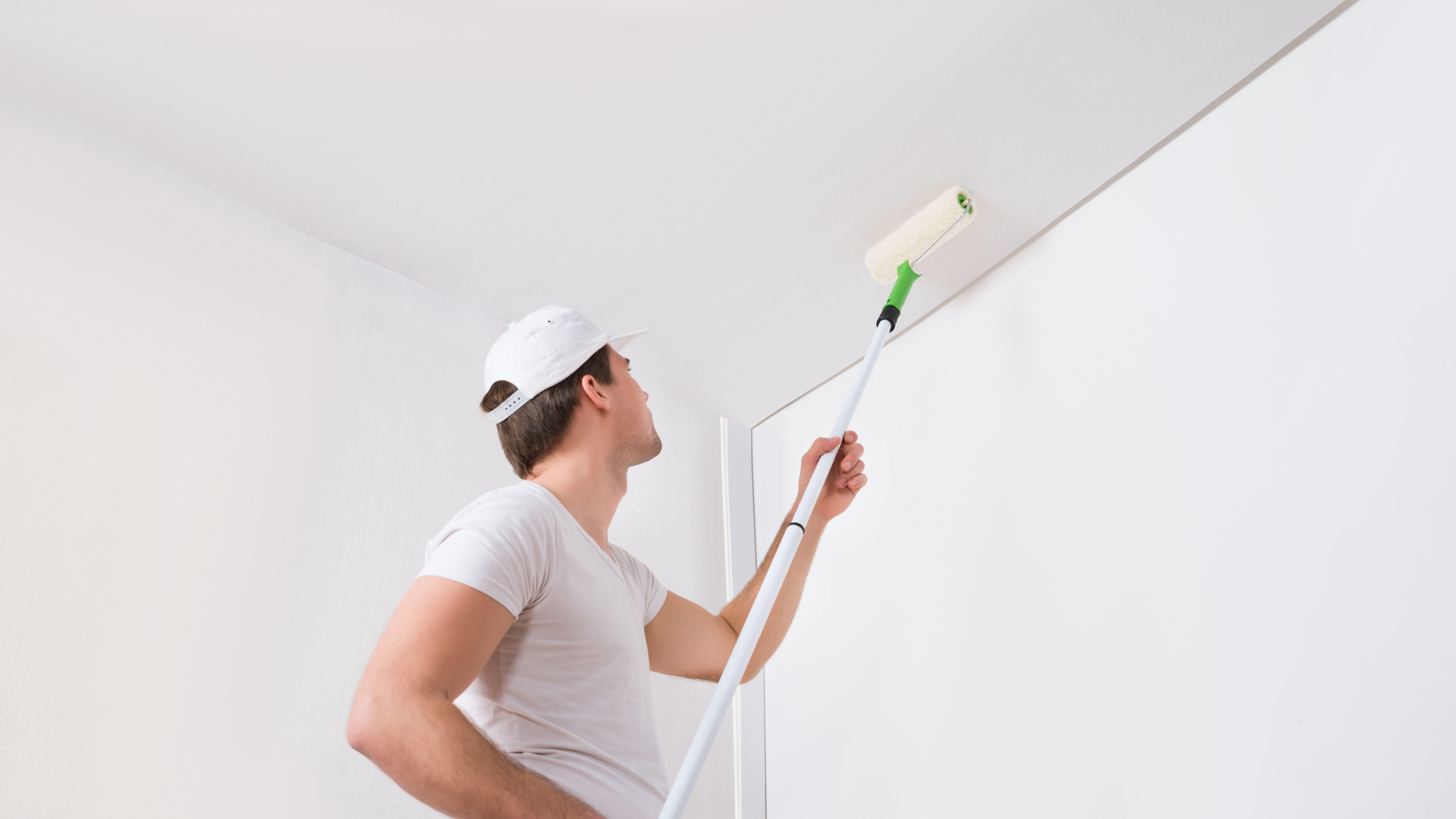 Cómo elegir pintura para paredes y techos