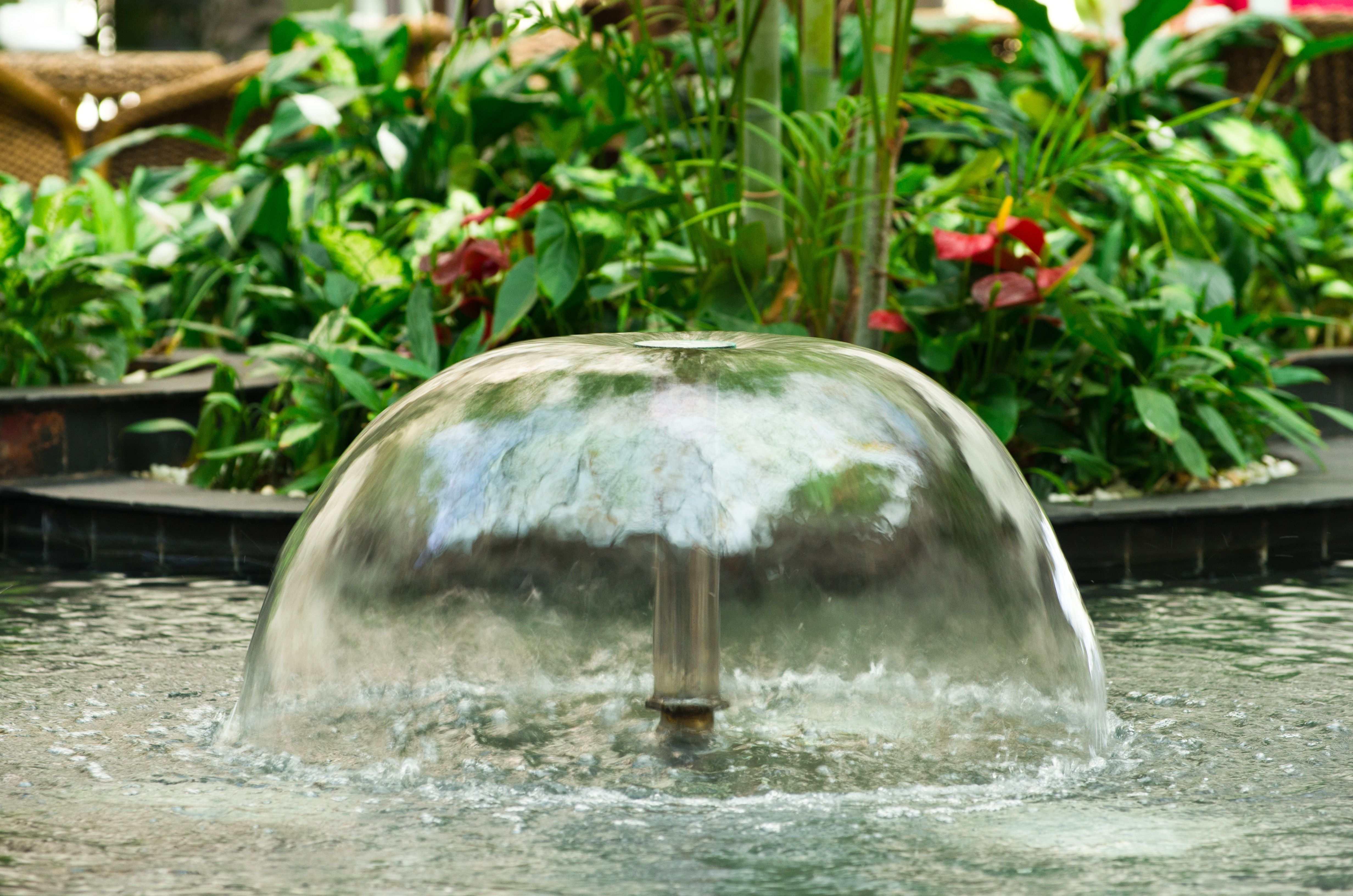 Comment choisir sa pompe pour bassin