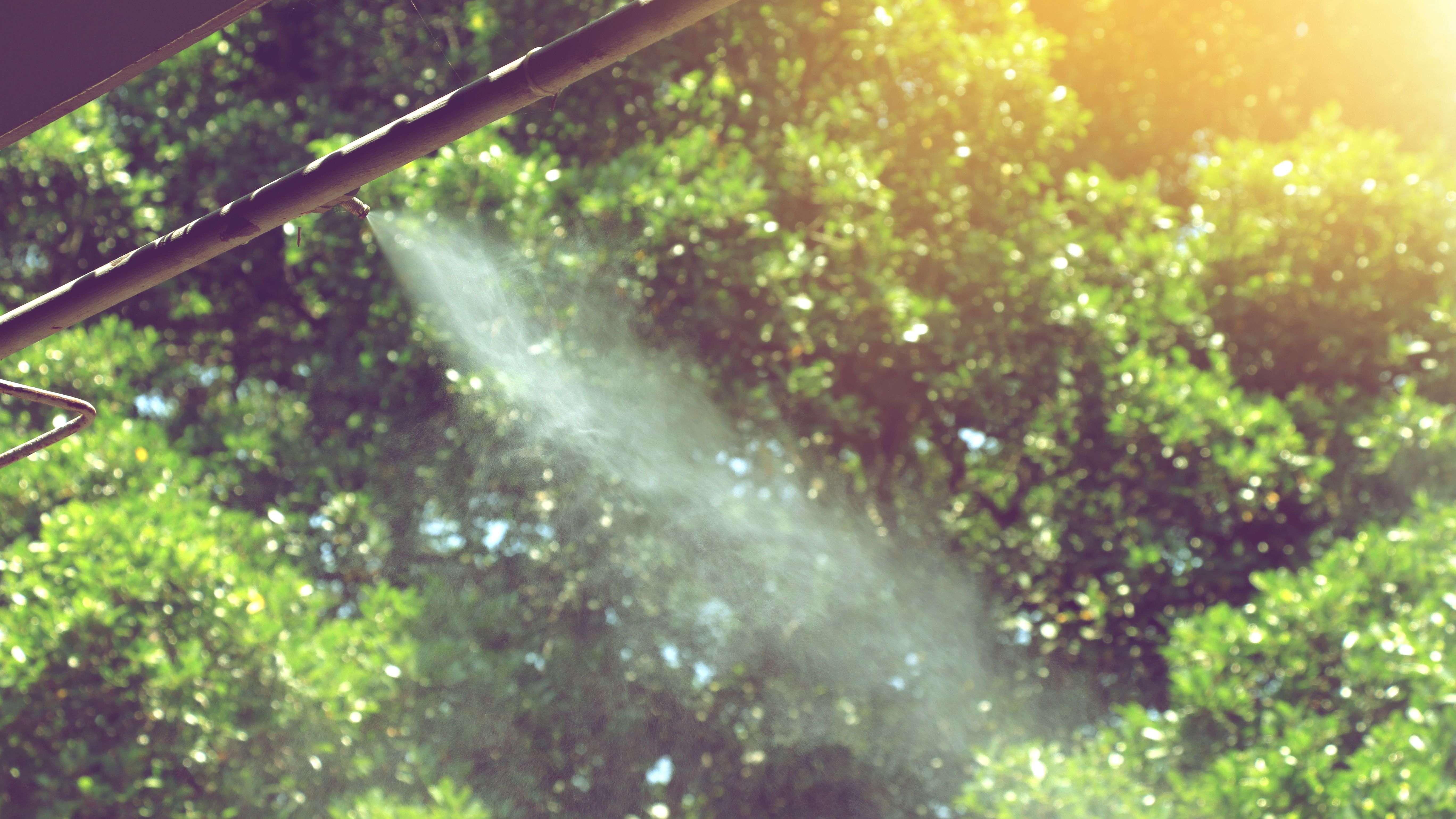 ¿Cómo elegir un nebulizador de jardín?