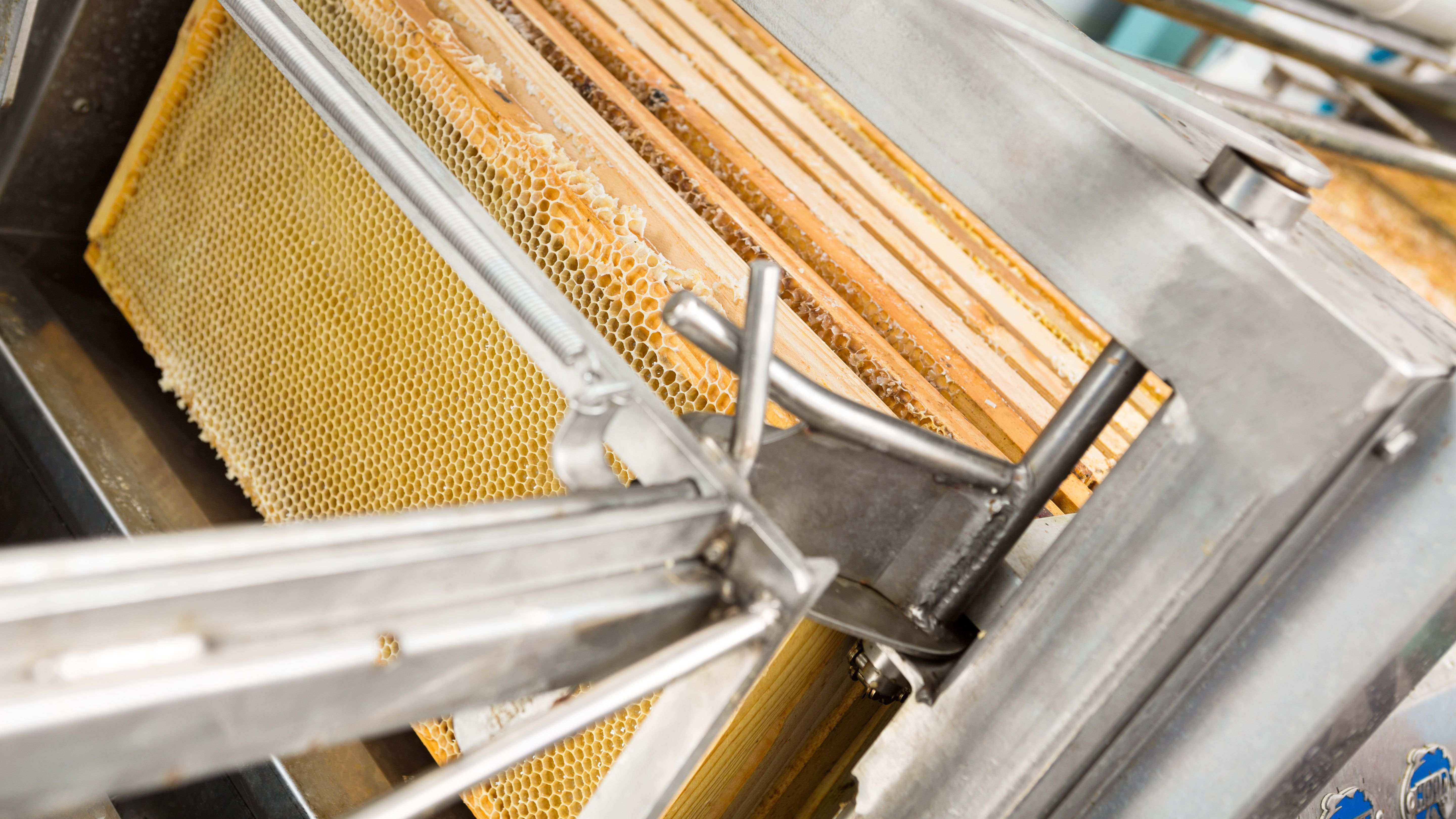 How to choose your  honey extractor, maturator and other beekeeping equipment?