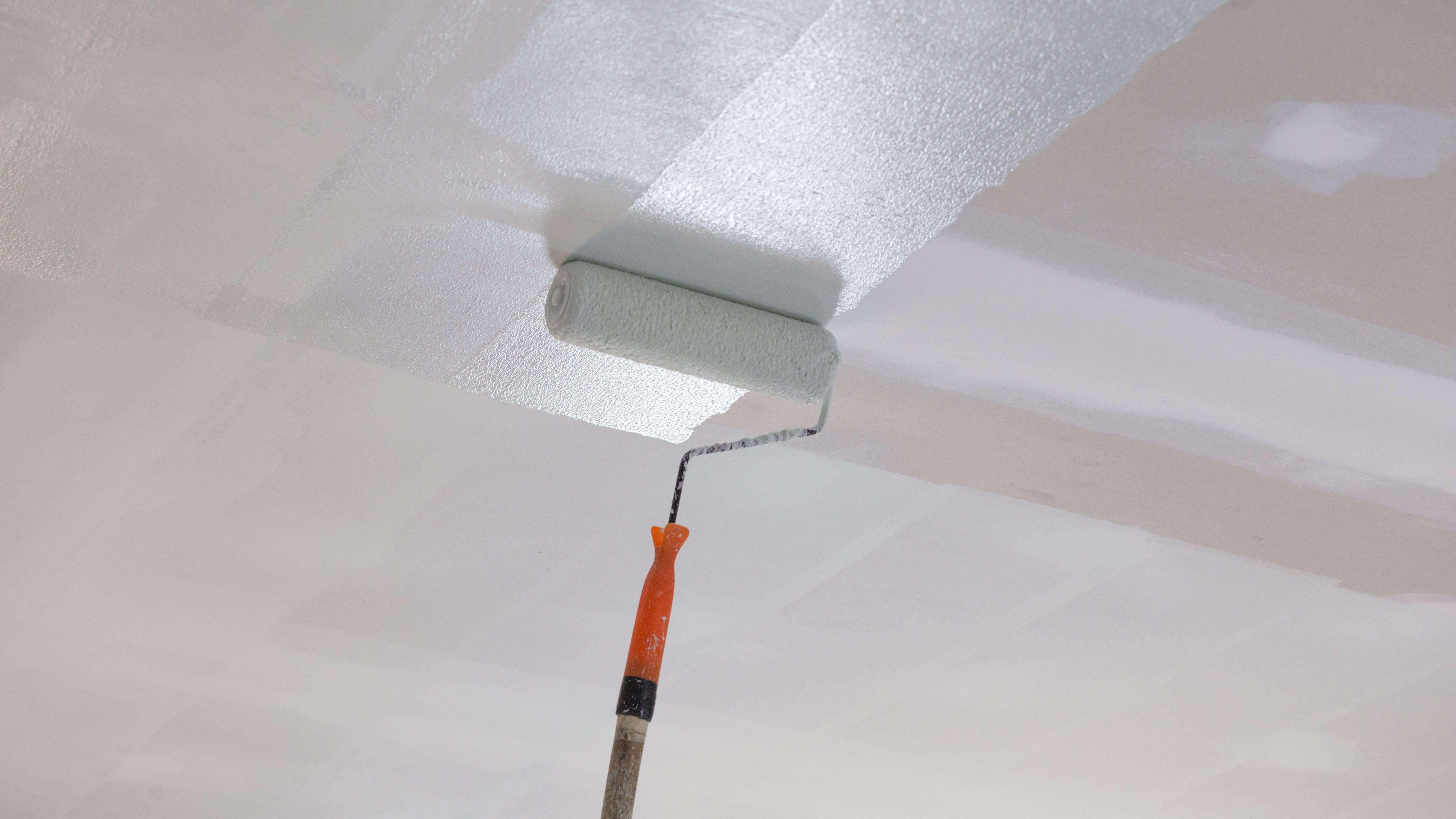 Quelle peinture  pour plafond