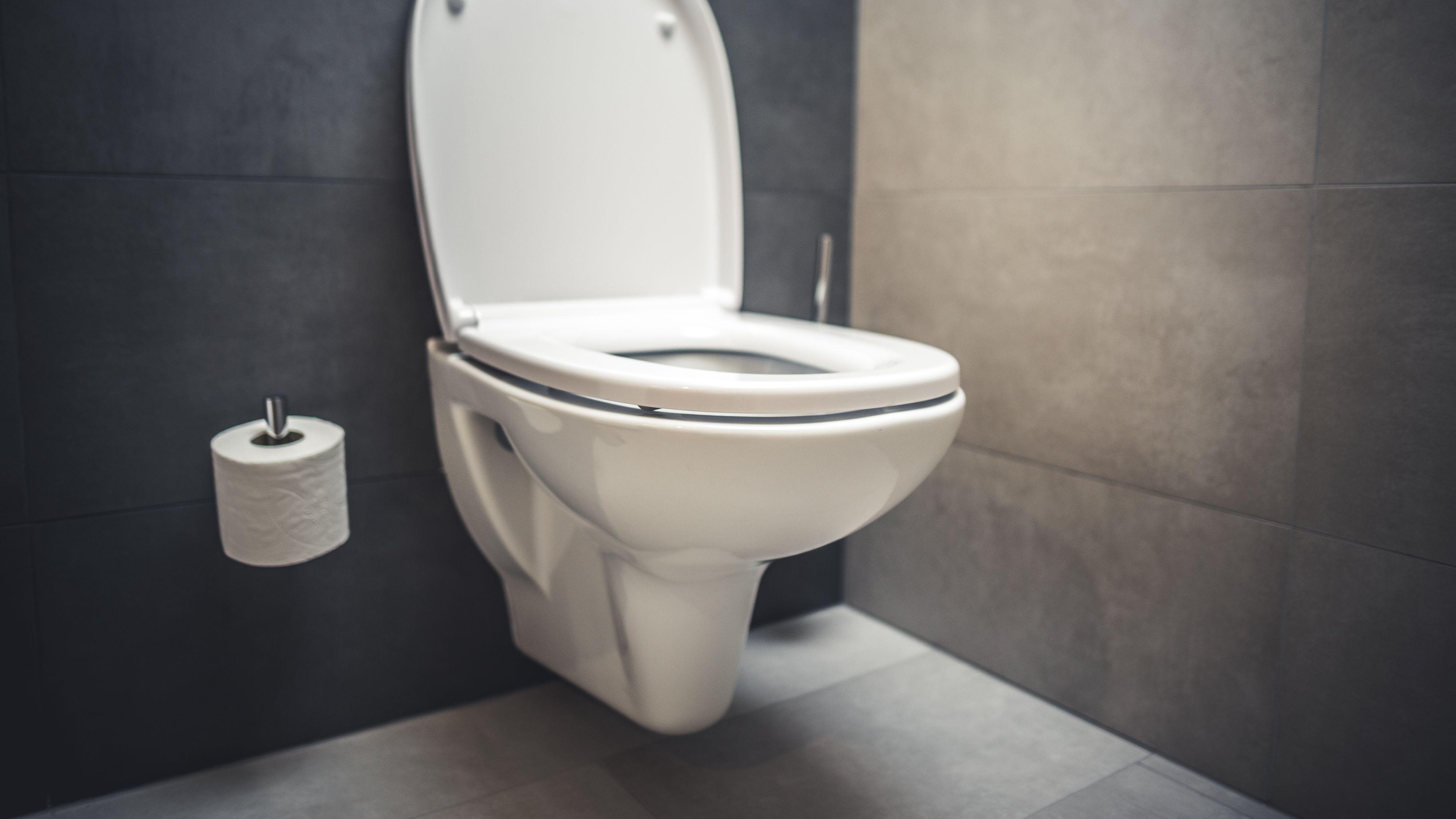 Comment choisir ses WC suspendus