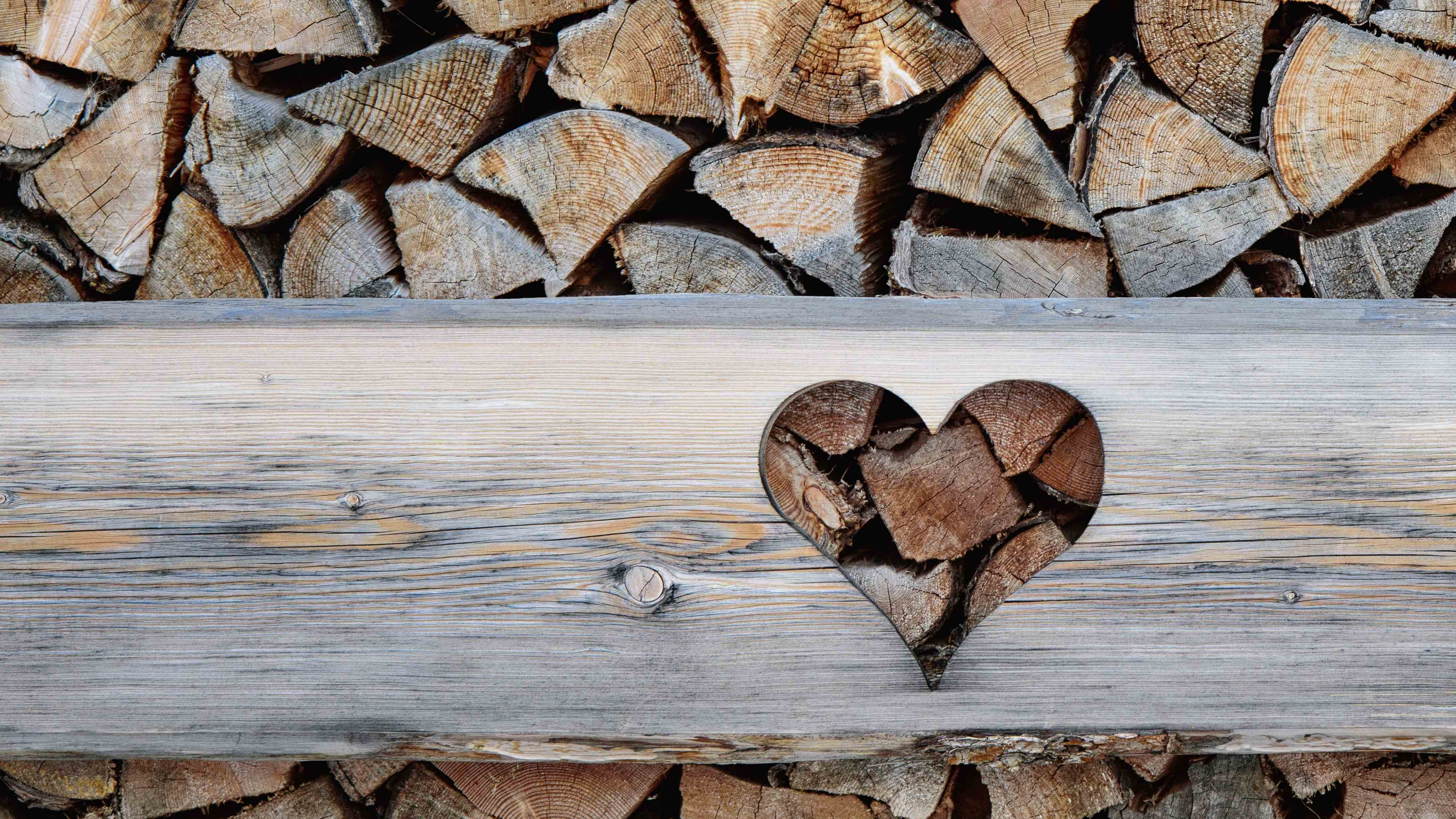 February: your home and garden checklist