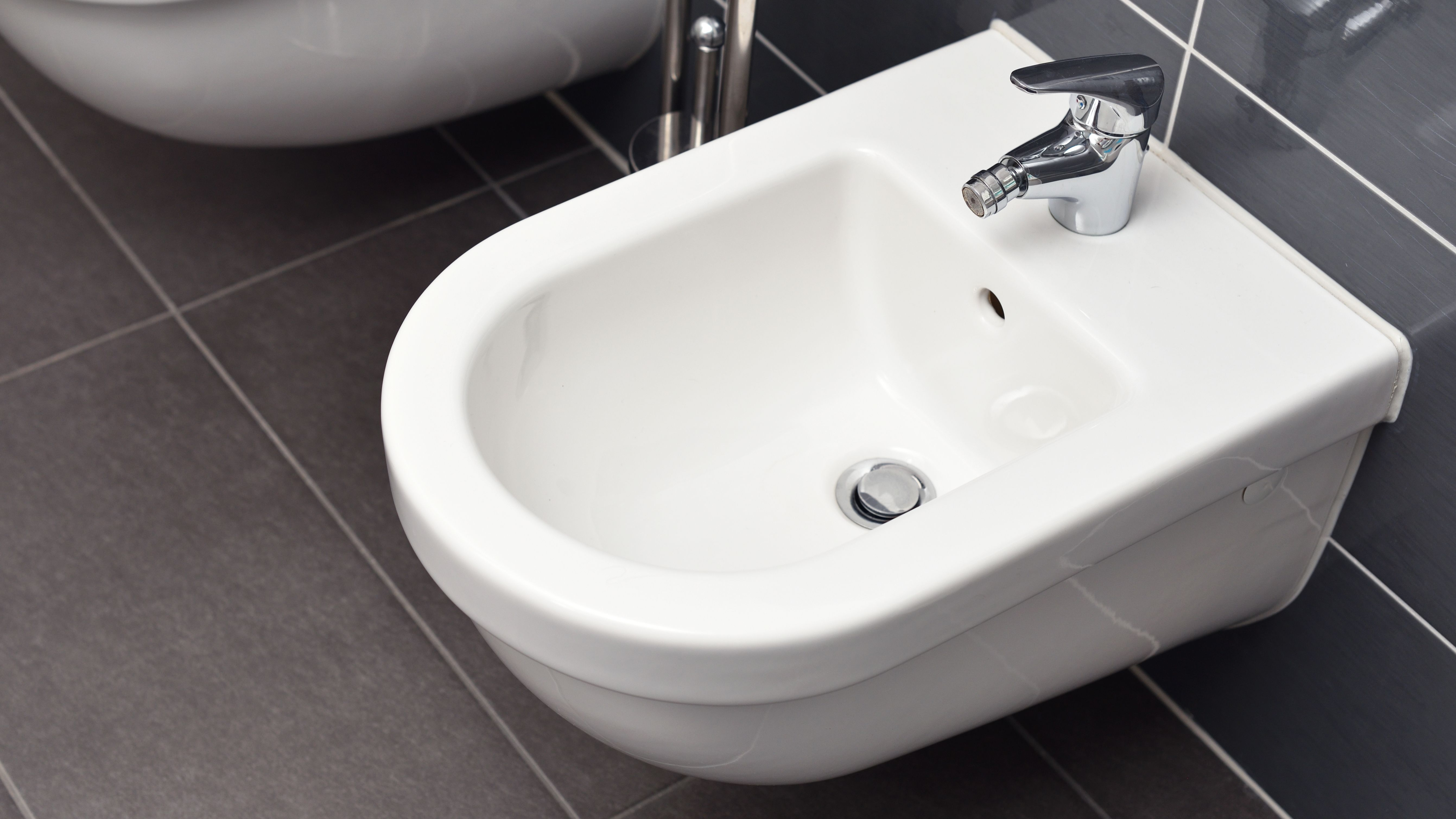 Bidet buying guide