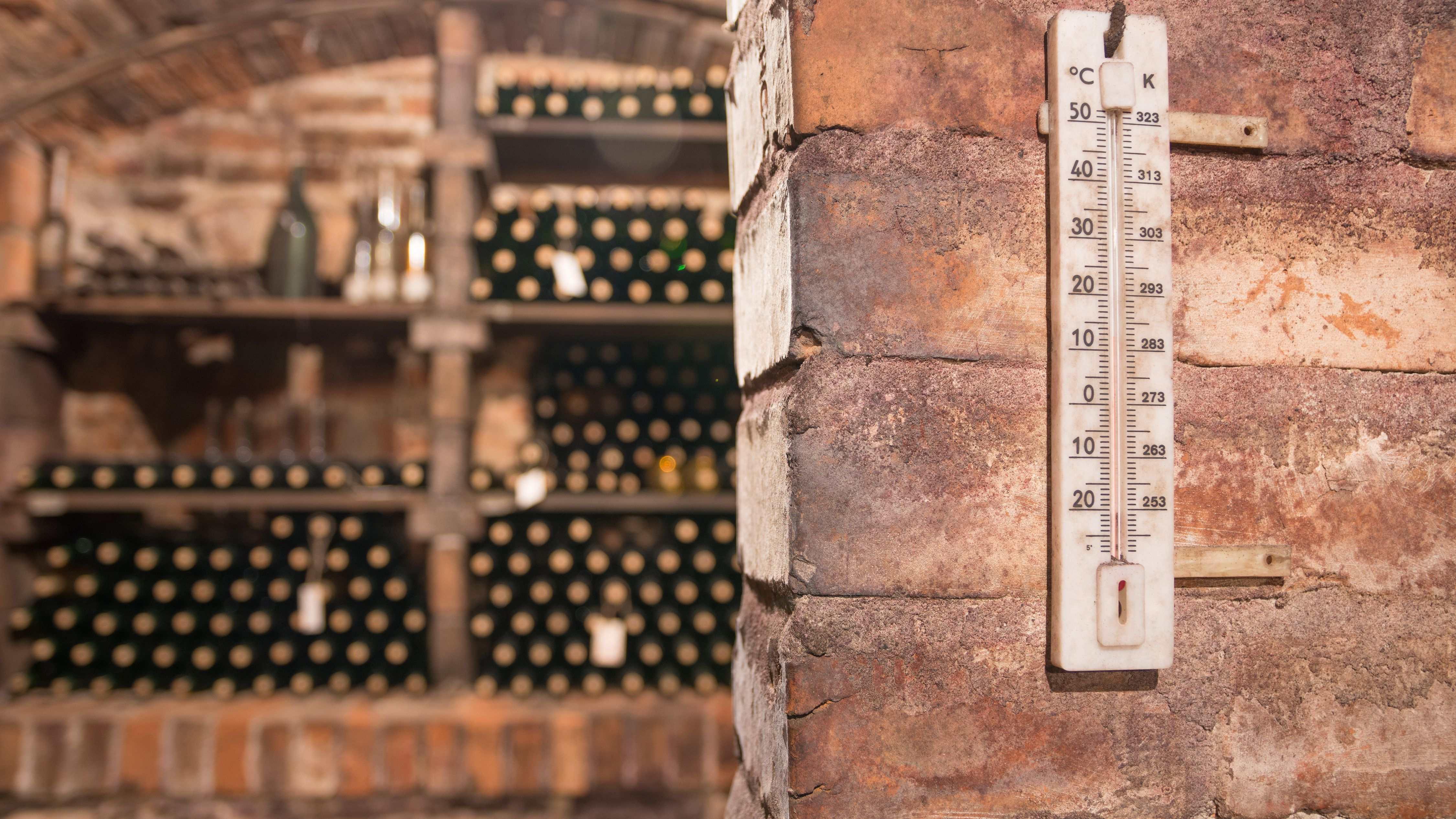 Climatiseur de cave à vin : comment choisir