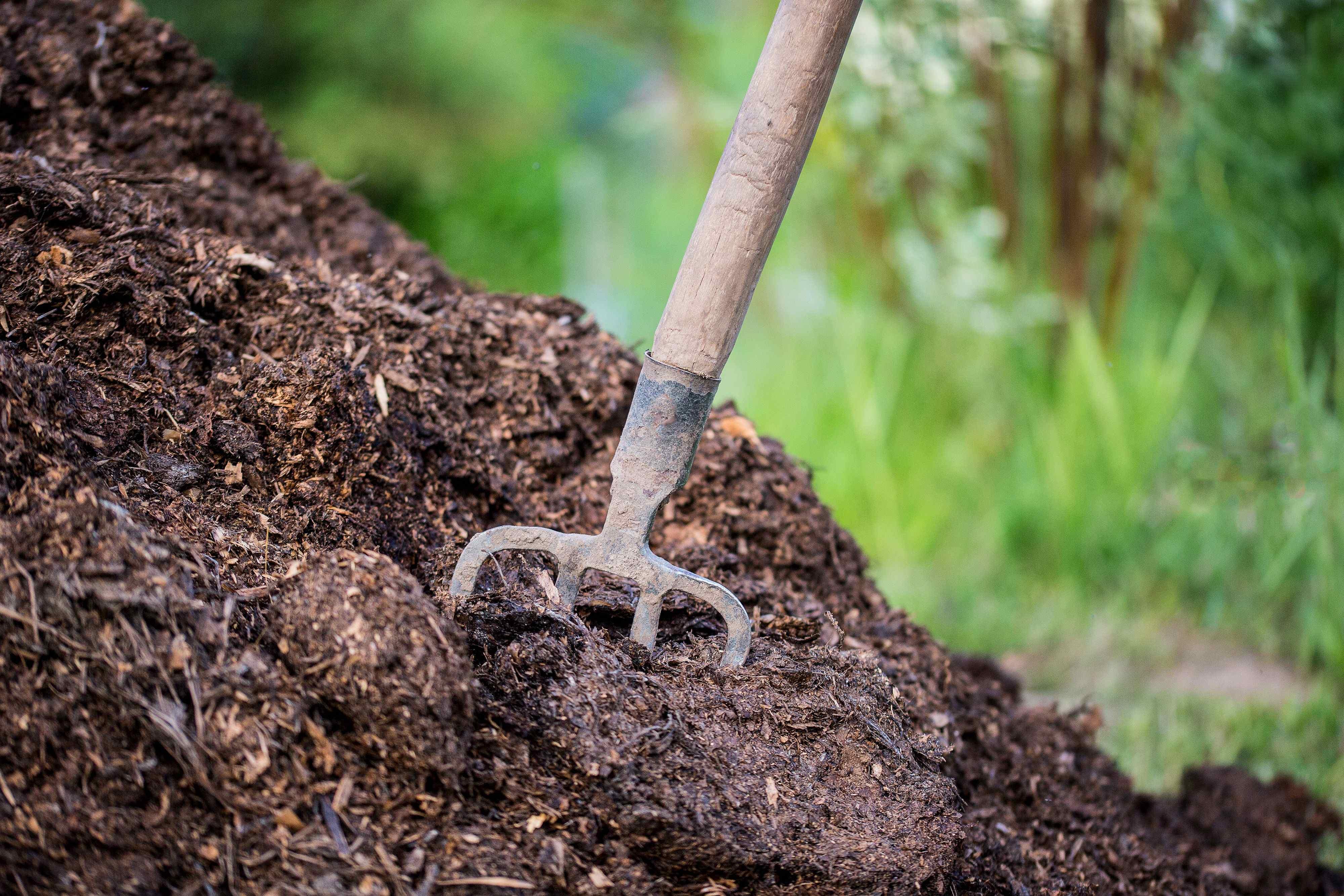 La manutenzione dell'orto in autunno