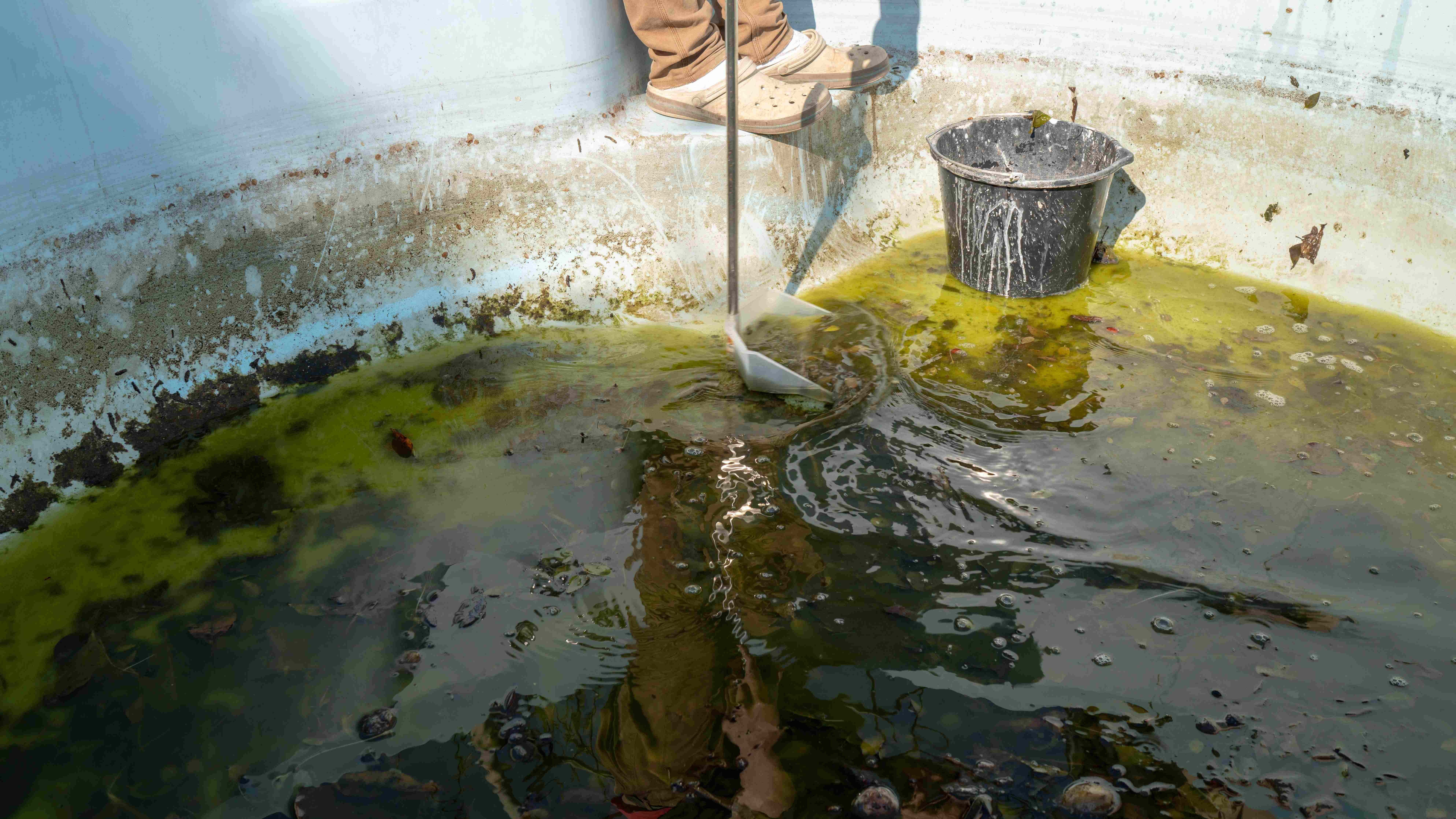 Cómo eliminar el agua verde de la piscina
