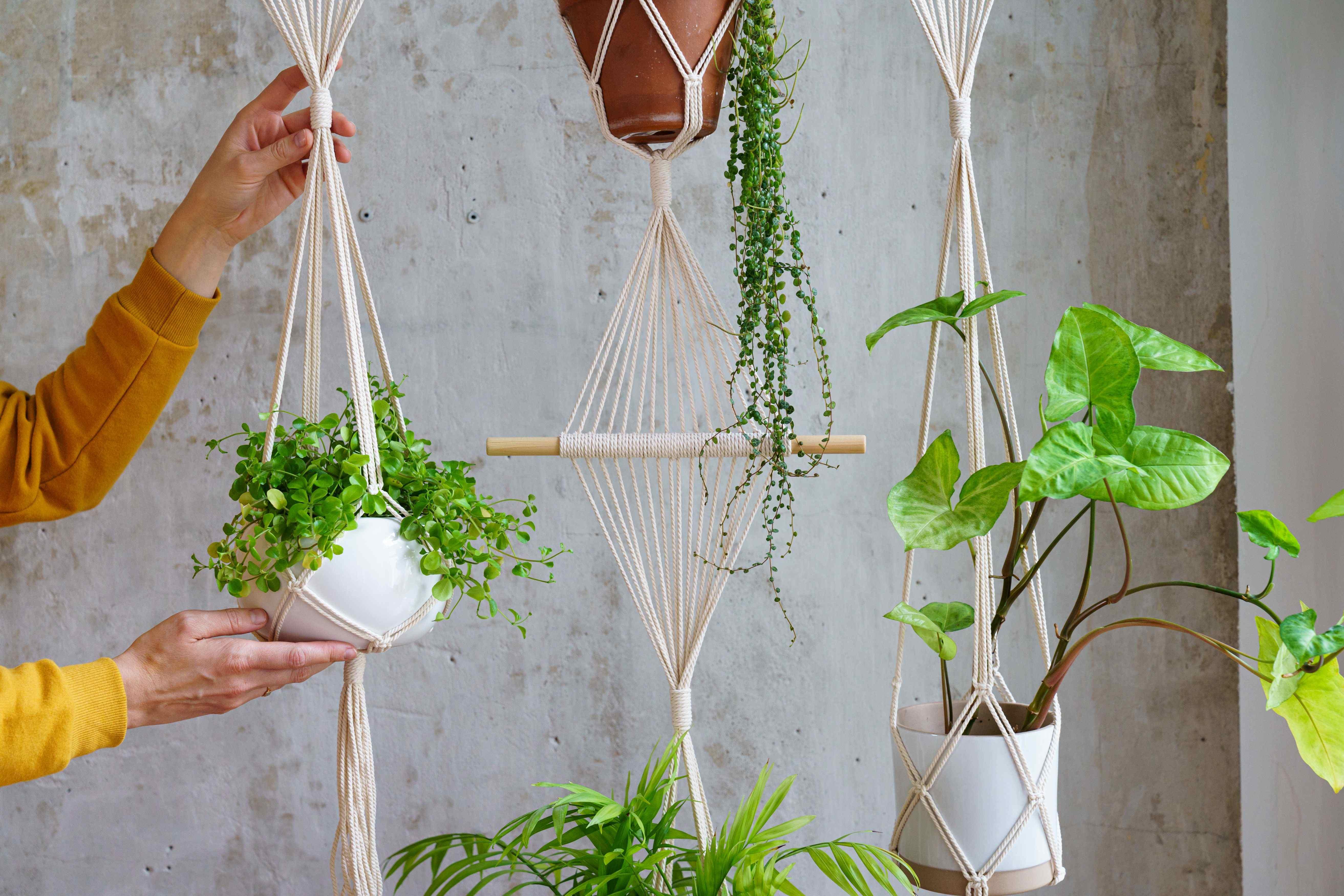 Cómo elegir macetas y jardineras para tu terraza o balcón