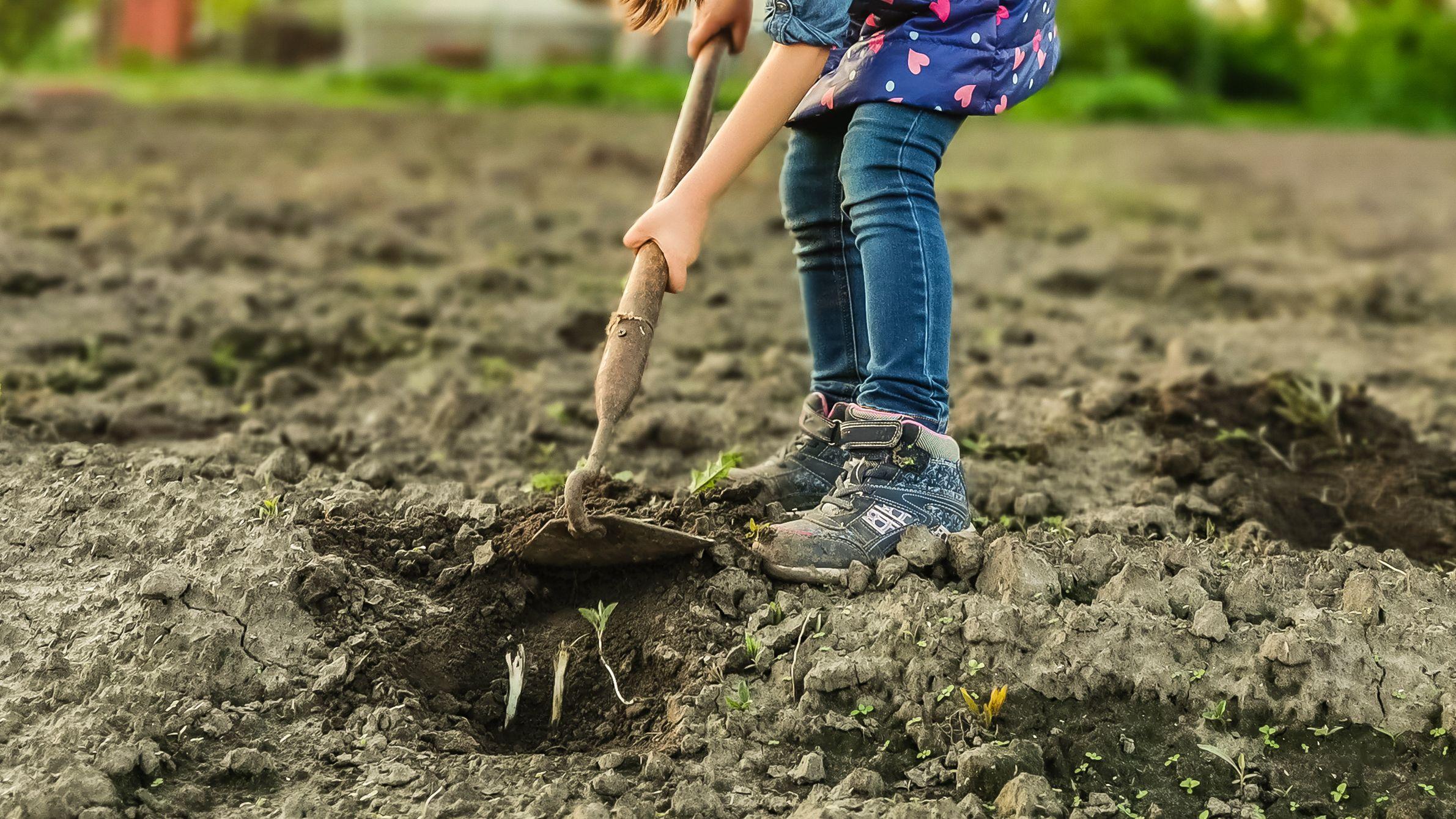 Cómo preparar el suelo para hacer un huerto