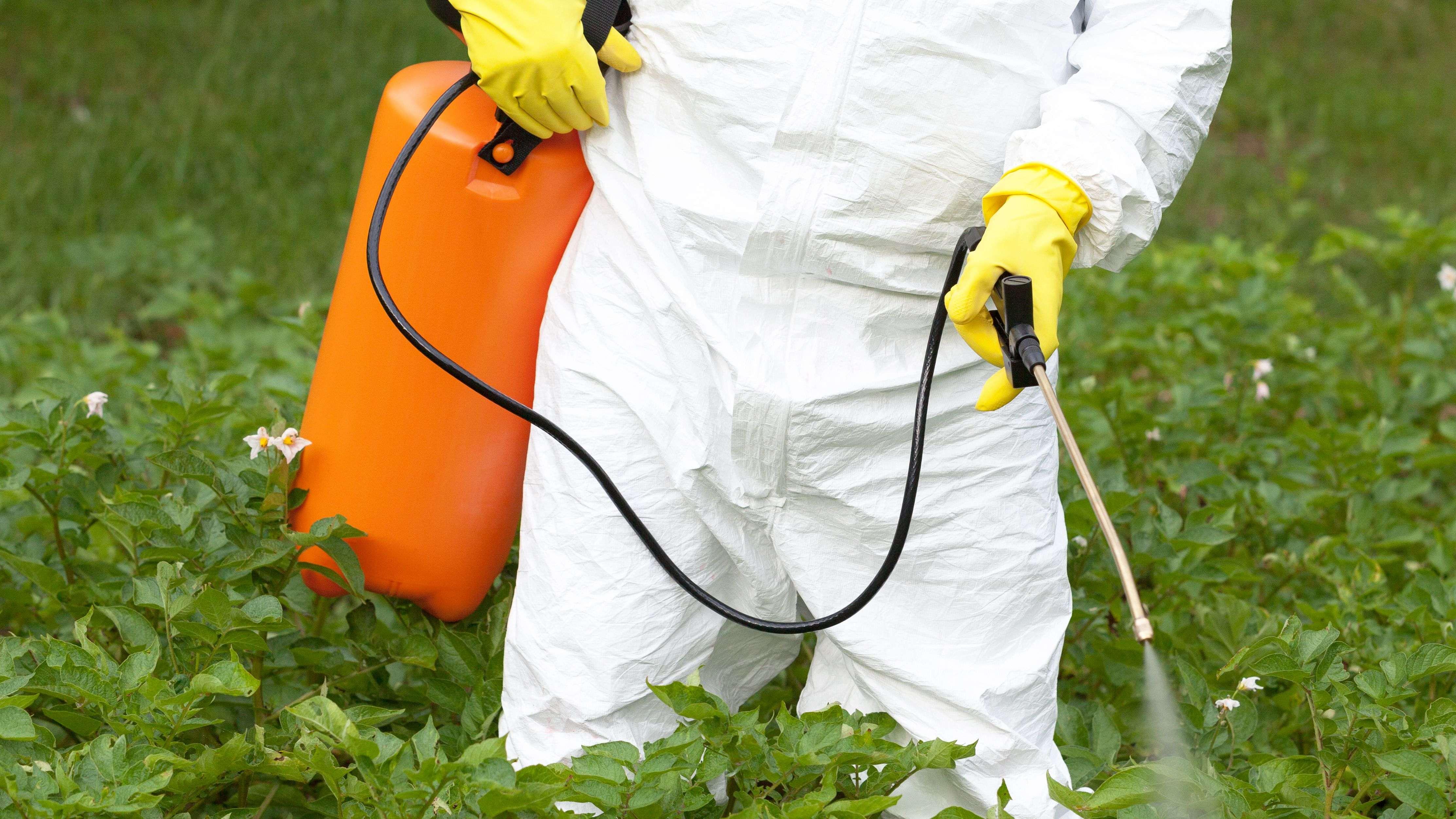 Cómo limpiar un pulverizador