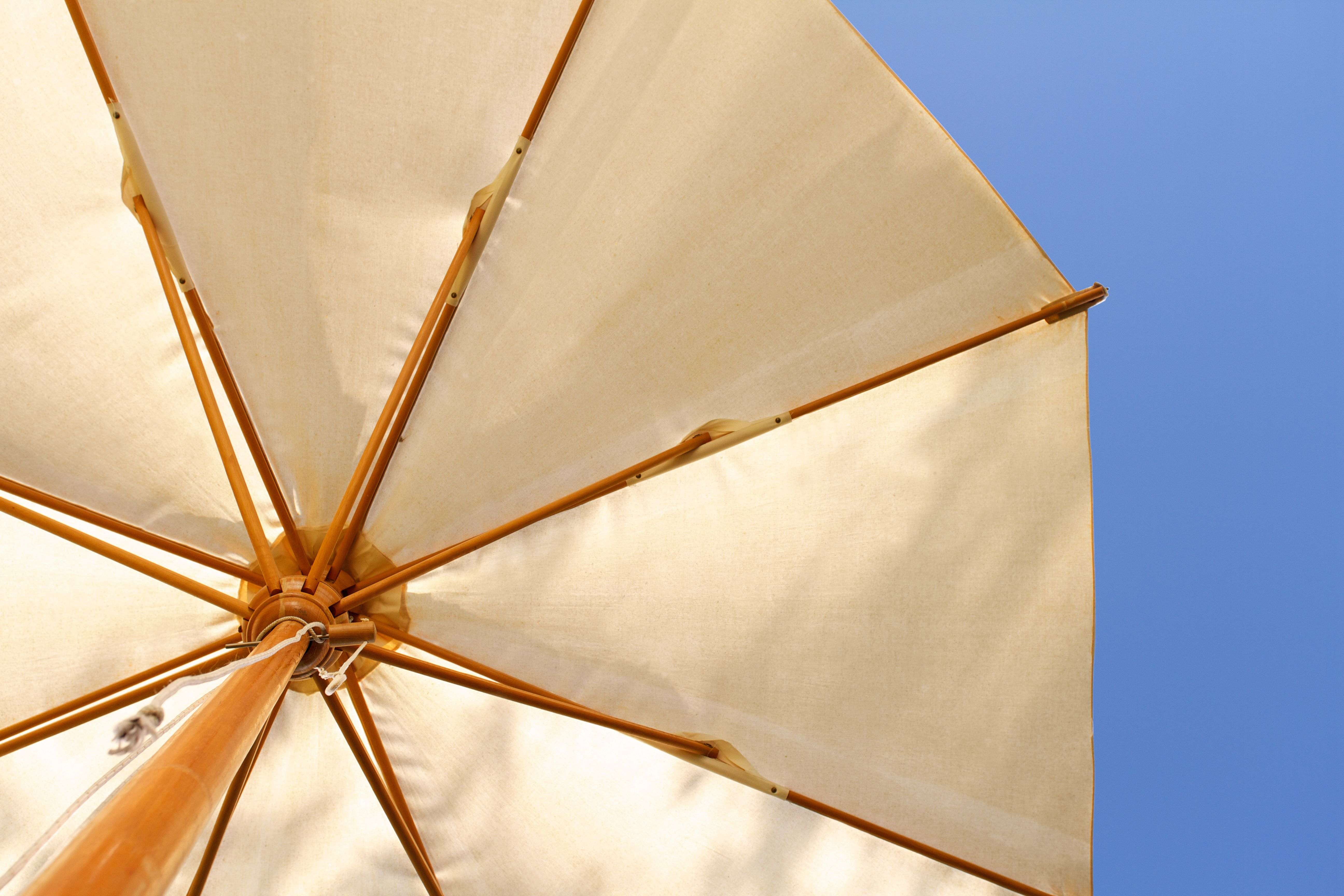 Parasol or gazebo: which is right for your garden?