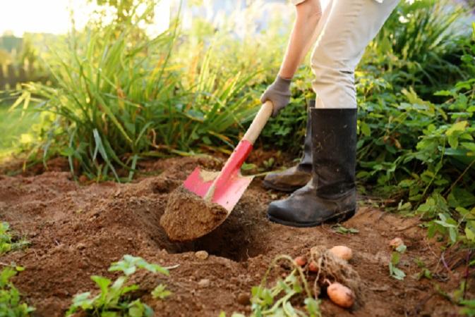Cómo reconocer el tipo de tierra de un suelo