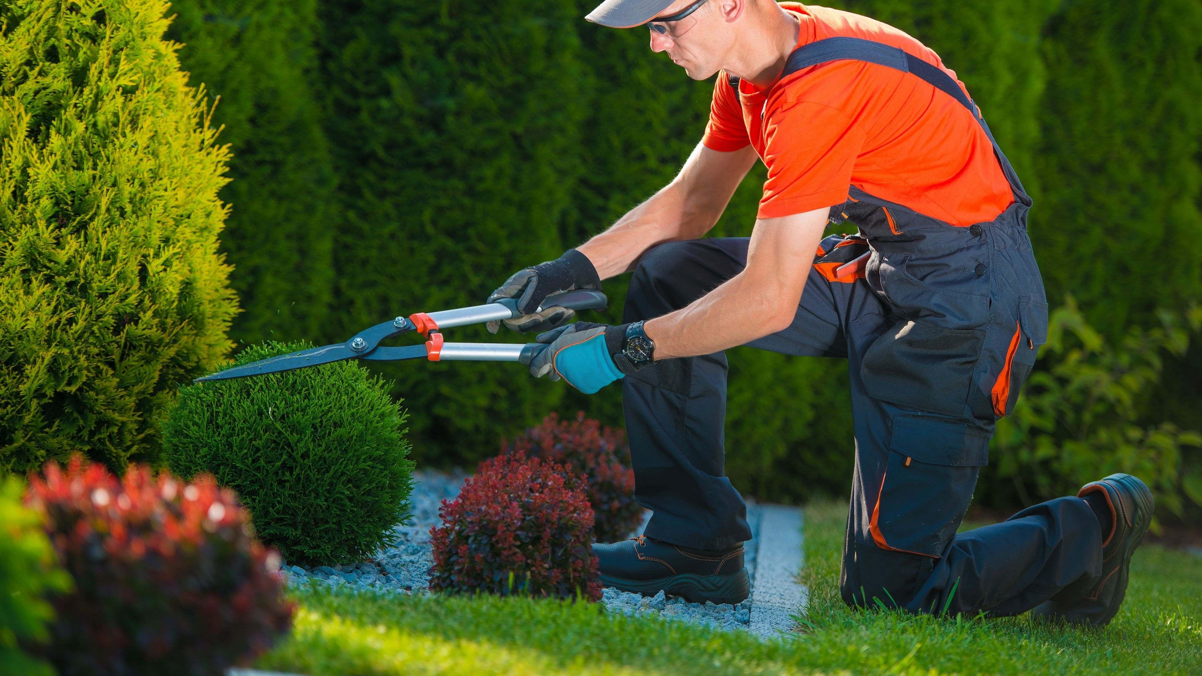EPI du paysagiste :  les équipements de protection individuelle indispensables
